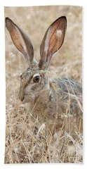 Hand Towel featuring the photograph Black-tailed Hare by Doug Herr