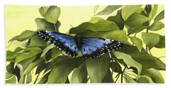 Blue Butterfly Of Branson Hand Towel