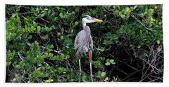 Hand Towel featuring the photograph Blue Heron In Tree by Dan Friend