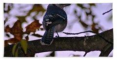 Blue Jay Hand Towel by Joe Faherty