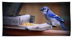 Bath Towel featuring the photograph Blue Jay On Backyard Feeder by Kay Novy