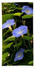 Hand Towel featuring the photograph Blue Morning Glories by Kay Novy