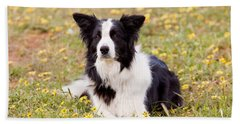 Border Collie In Field Of Yellow Flowers Bath Towel