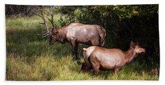 Bull Elk 7x7 Bath Towel