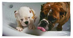 Hand Towel featuring the photograph Bulldog Bath Time II by Jeanette C Landstrom