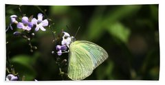 Hand Towel featuring the photograph Butterfly On Purple Flower by Ramabhadran Thirupattur