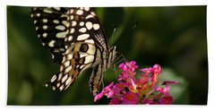 Butterfly Hand Towel by Ramabhadran Thirupattur