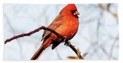 Cardinal 1 Bath Towel by Joe Faherty