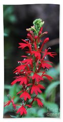 Cardinal Flower Bath Towel