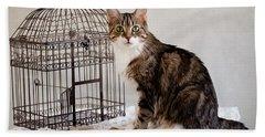 Cat And Bird Bath Towel