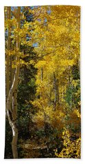 Bath Towel featuring the photograph Changing Seasons by Vicki Pelham