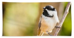 Hand Towel featuring the photograph Chickadee by Cheryl Baxter