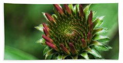 Coneflower Close-up Hand Towel