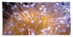 Coral 3 Hand Towel