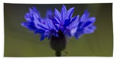 Hand Towel featuring the photograph Cornflower Blue by Clare Bambers