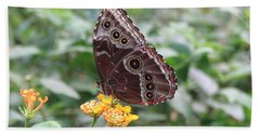 Costa Rica Butterfly Hand Towel