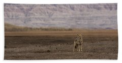 Coyote Badlands National Park Bath Towel