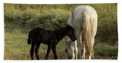Cracker Foal And Mare Bath Towel by Lynn Palmer