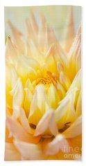 Dahlia Flower 10 Bath Towel