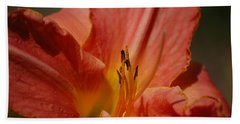 Daylilly Bath Towel by Randy J Heath
