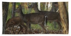 Hand Towel featuring the photograph Deer In Forest by Lydia Holly