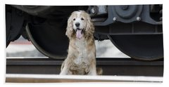 Dog Under A Train Wagon Bath Towel