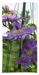 Double Clematis Named Crystal Fountain Bath Towel by J McCombie