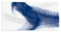 Eastern Diamondback Rattlesnake, X-ray Hand Towel by Ted Kinsman