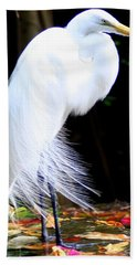 Elegant Egret At Water's Edge Hand Towel