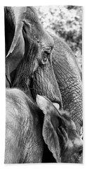 Elephant Ears Bath Towel