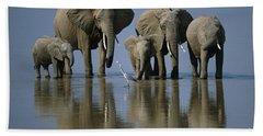 Elephants Hand Towel