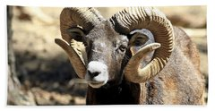 European Big Horn - Mouflon Ram Bath Towel