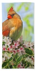 Hand Towel featuring the photograph Female Cardnial In Wegia Digital Art by Debbie Portwood