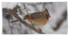 Female Northern Cardinal 4230 Pan Hand Towel by Michael Peychich