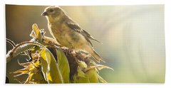 Hand Towel featuring the photograph Finch Aglow by Cheryl Baxter