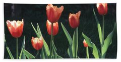 Flared Red Yellow Tulips Bath Towel by Tom Wurl