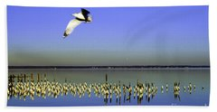 Bath Towel featuring the photograph Flying Solo by Clayton Bruster