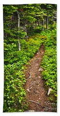 Forest Path In Newfoundland Bath Towel