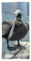 Bath Towel featuring the photograph Friendly Pelican by Carla Parris