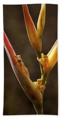 Frog And Heliconia Hand Towel