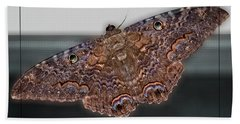 Hand Towel featuring the photograph Giant Moth by DigiArt Diaries by Vicky B Fuller