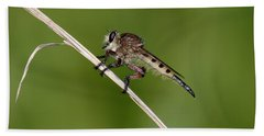 Giant Robber Fly - Promachus Hinei Bath Towel by Daniel Reed