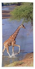 Giraffe Crossing Stream Hand Towel
