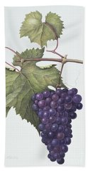 Grapes  Hand Towel by Margaret Ann Eden