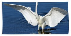 Great White Egret Spreading Its Wings Bath Towel