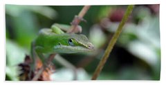 Green Anole Bath Towel by Kay Lovingood