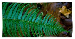 Bath Towel featuring the photograph Green Fern by Tikvah's Hope
