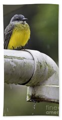 Grey-capped Flycatcher Hand Towel by Heiko Koehrer-Wagner