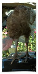 Grill Turkey Anyone Redneck Style Hand Towel