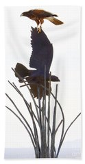 Bath Towel featuring the photograph Hawk On Statue by Rebecca Margraf